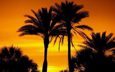 Retire in Deerfield Beach, Florida